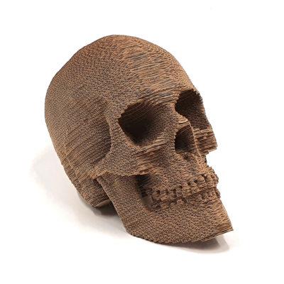 Crâne Carton